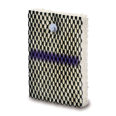 Bionaire 174 Colorcheck 174 Humidifier Wick Filter Type A